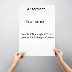 A3 formaat in cm en mm