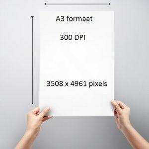 A3 formaat pixels